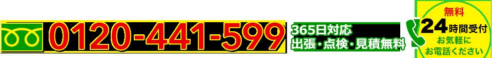 0120-441-599